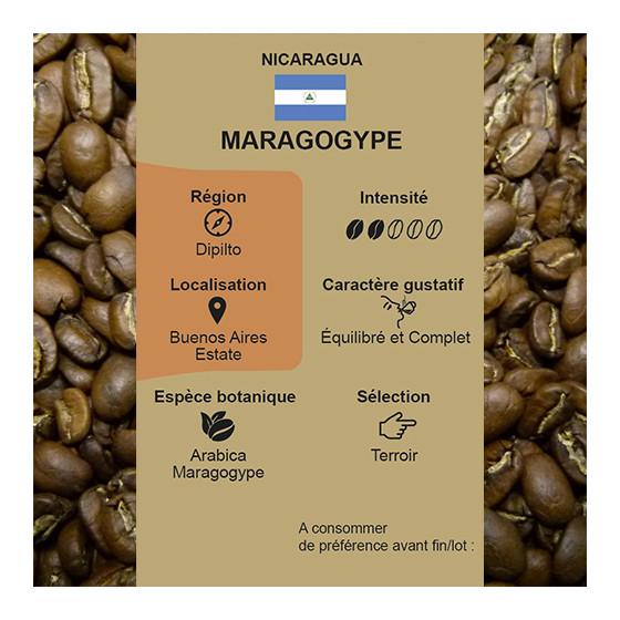 Café torréfié pur arabica Maragogype du Nicaragua