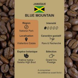 Café torréfié Blue Mountain de Jamaïque paquet en grains 250 g