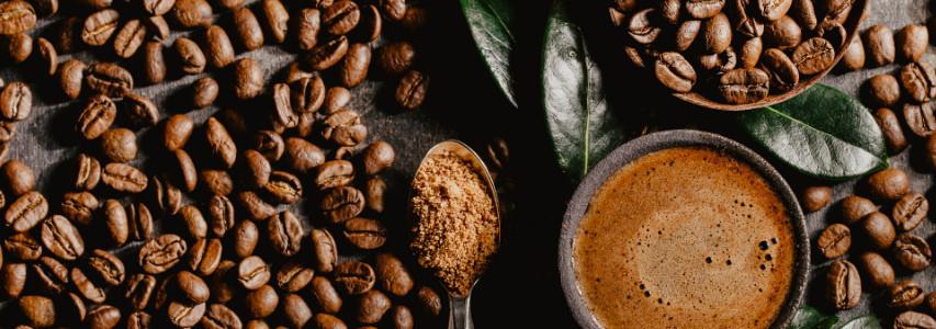 Cafés d'Amérique du Sud et d'Amérique Centrale
