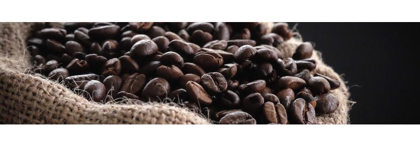 Nos cafés bio